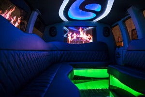 10-12 Passenger Party Van